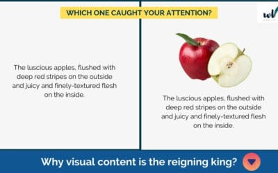 Why Visual Content Is the Reigning King?
